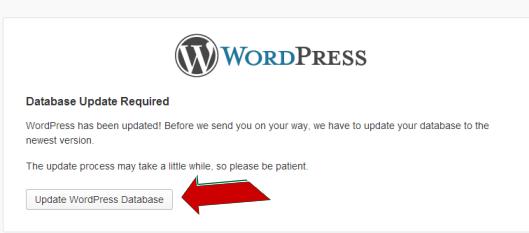 Update WordPress Database