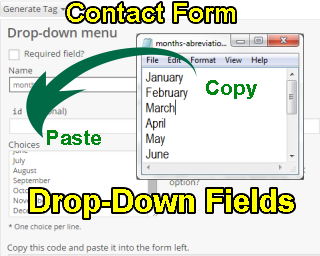 Contact Form Drop-Down Fields